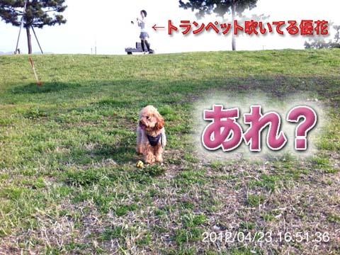 09_20120425182532.jpg