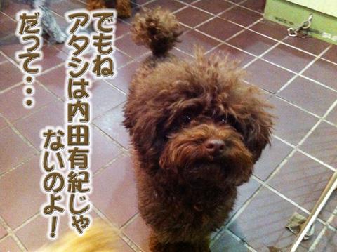 10_20120331162214.jpg
