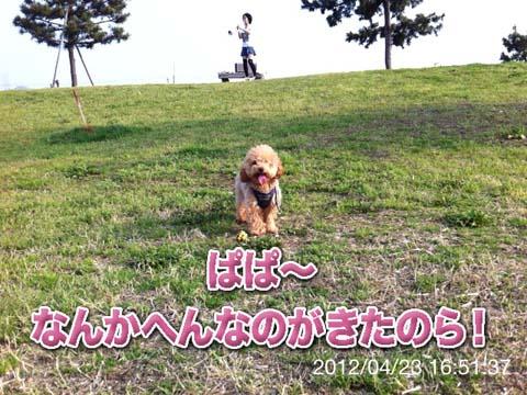 10_20120425182531.jpg