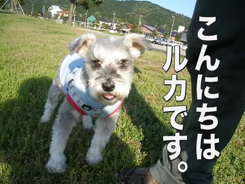 10_20120428092837.jpg