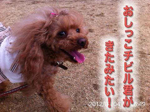 10_20120506165241.jpg