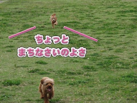11_20111106004405.jpg
