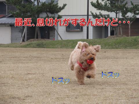 11_20120311082057.jpg