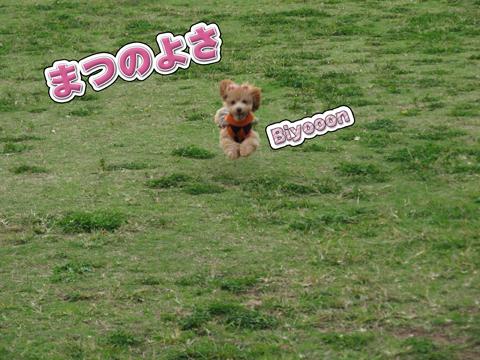 12_20111106004329.jpg