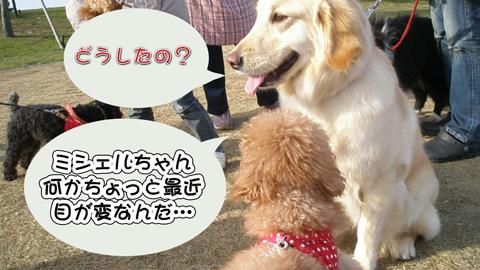 12_20120406213950.jpg