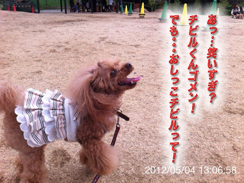 12_20120506165239.jpg