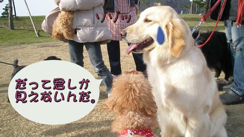 13_20120406214059.jpg
