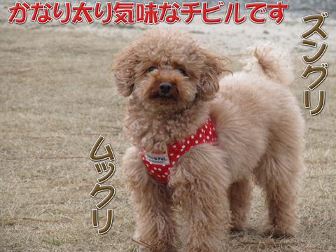 14_20120311082059.jpg