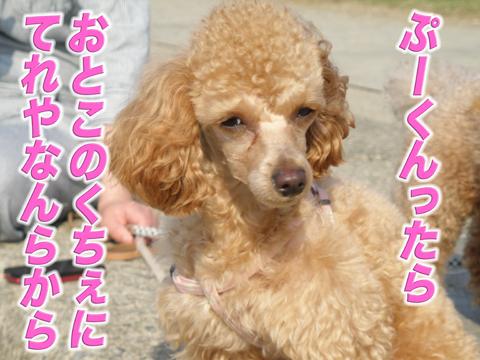 19_20120507212758.jpg