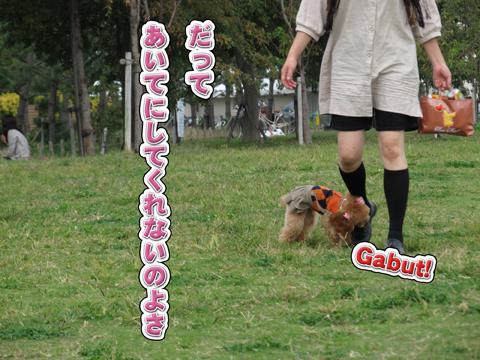 22_20111106004243.jpg