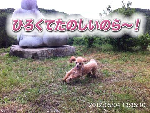 22_20120506165132.jpg