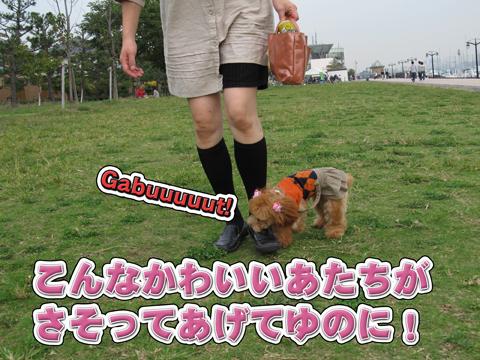 25_20111106004204.jpg