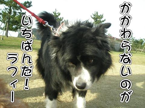 28_20120406214326.jpg