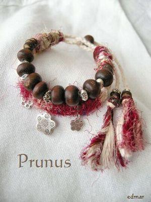 プラナス1