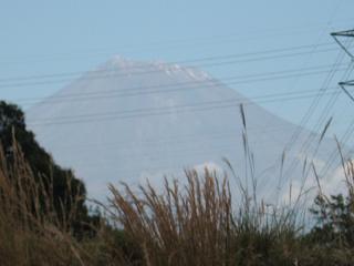 すぐそこに富士山♪