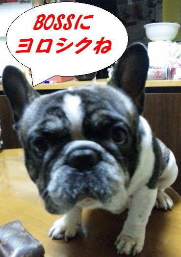 111218_001517a_20111218013411.jpg