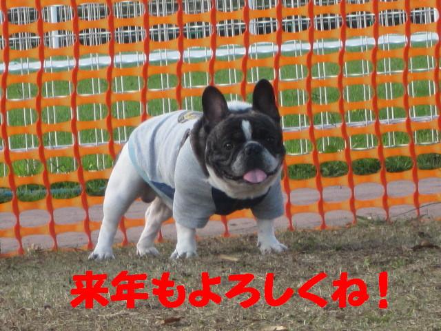 IMG_3499a.jpg