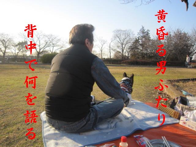 IMG_4056a.jpg