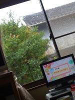 2010_0626_0829.jpg