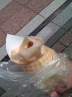 2010_0704_1407.jpg