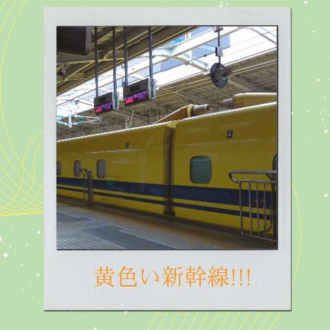 kamejiro06029.jpg