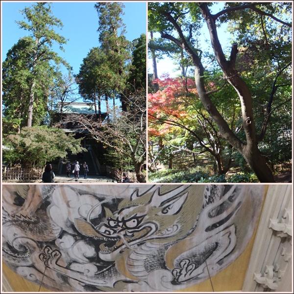 26-11鎌倉1