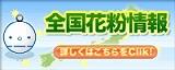 各地の花粉情報…weathernews.jp