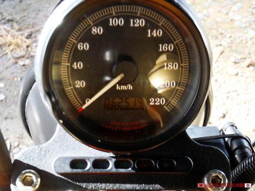 P6120016.jpg
