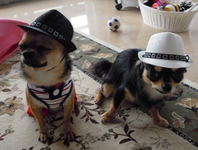 ベテラン探偵と新人探偵