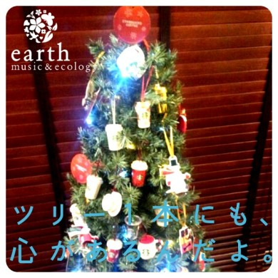 earthmusicecologyクリスマスツリー