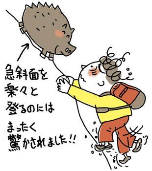 猪と登山者