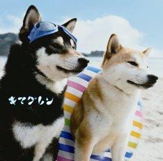 news_thumb_kimaguren_JK_tsujo.jpg