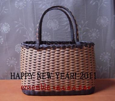 DSCN2032_convert_20110105205410.jpg