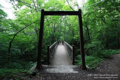 吊り橋02