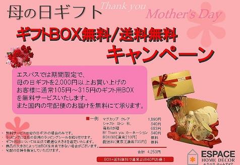 母の日キャンペーン3