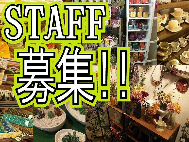 スタッフ募集2012.11