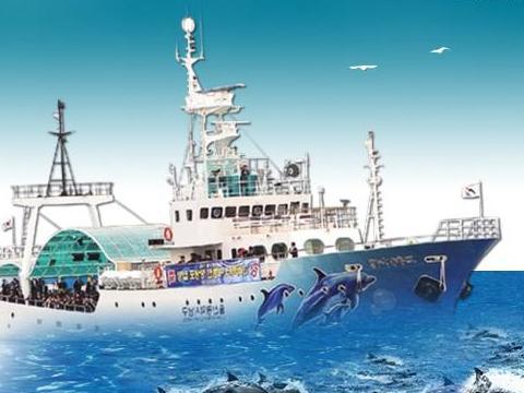 ウルサン クジラ海旅行船