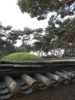 朝鮮王陵 宣陵・靖陵 陵内3
