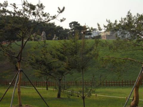 朝鮮王陵 宣陵・靖陵 陵内5