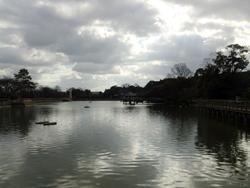 長岡天神の池