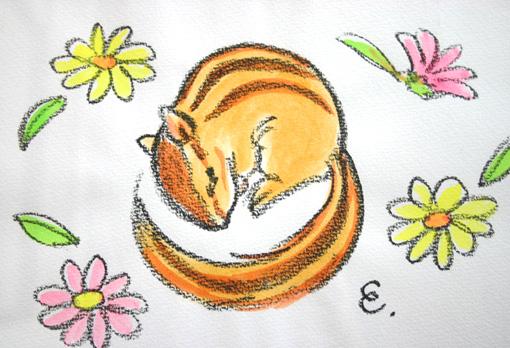 00りすと花IMG_7211