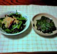 赤い茎ほうれん草サラダ