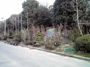 大泉緑地 2012 はないずみの庭(その2)