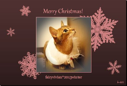 2013クリスマスカード2