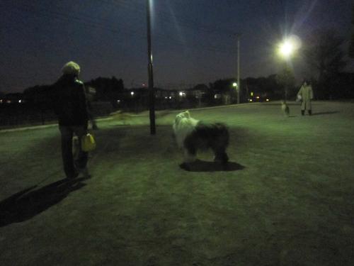 日が暮れて海谷公園