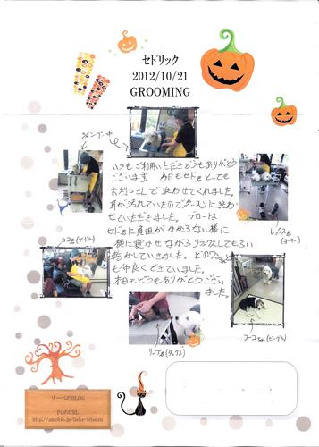 _シャンプー・レポート/121021