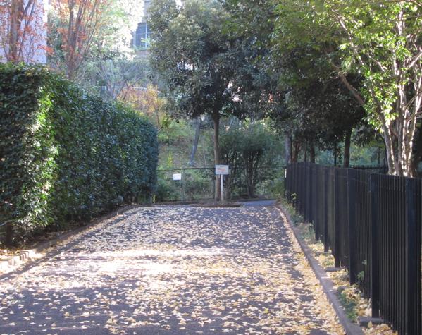 落ち葉の入口