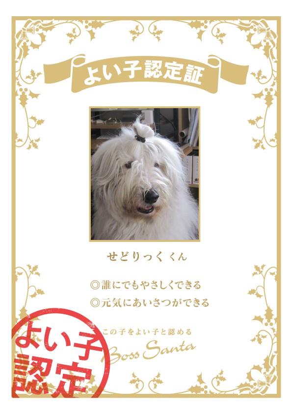 certification_786f029d.jpg