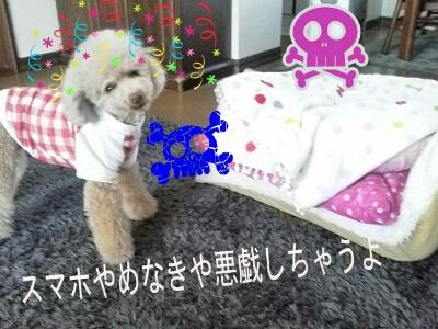 PicsArt_1333886306702.jpg