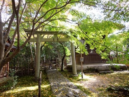 蓮花寺 庭1